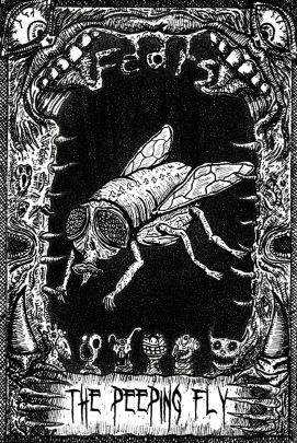 The Peeping Fly pdf