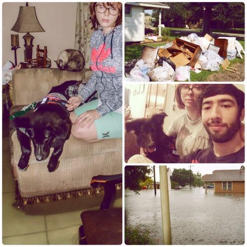 Hurricane Harvey (1) (1)